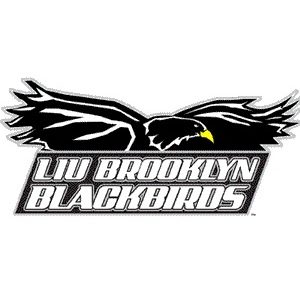 Long Island University-Brooklyn Campus